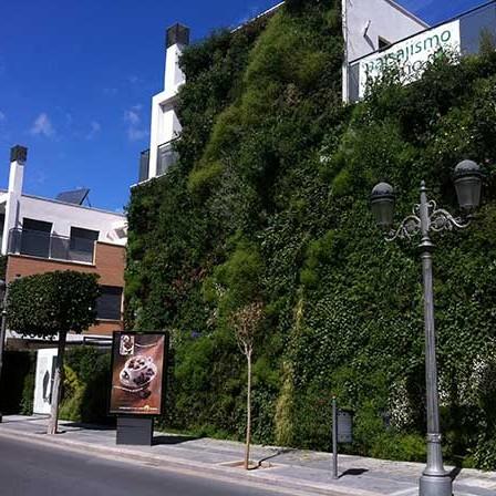 jardines-verticales-caseros