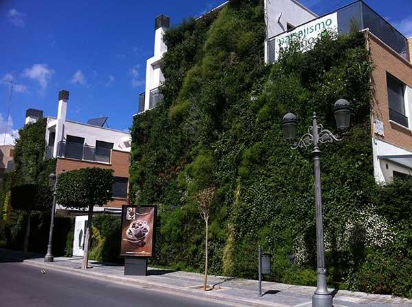 Jardines verticales caseros para muchos gustos sotoser for Paisajismo urbano