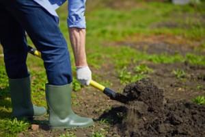Cuidado de Jardines Madrid