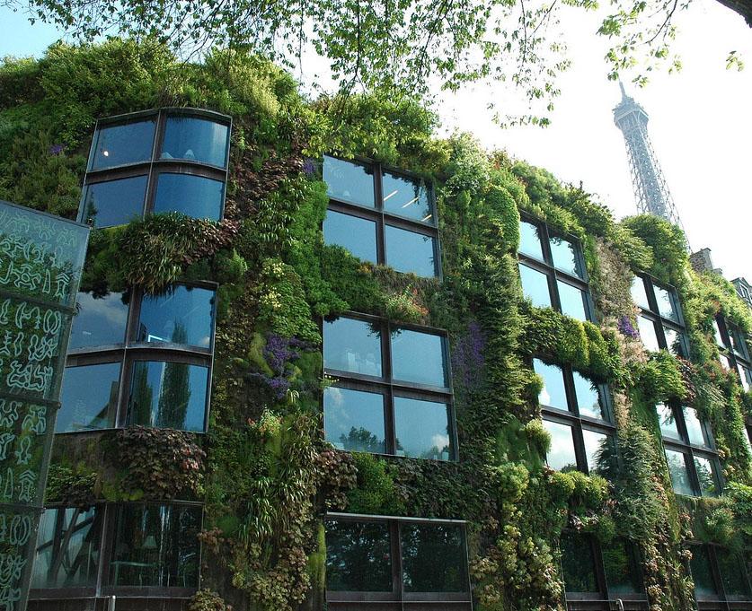 instalar un jardín vertical